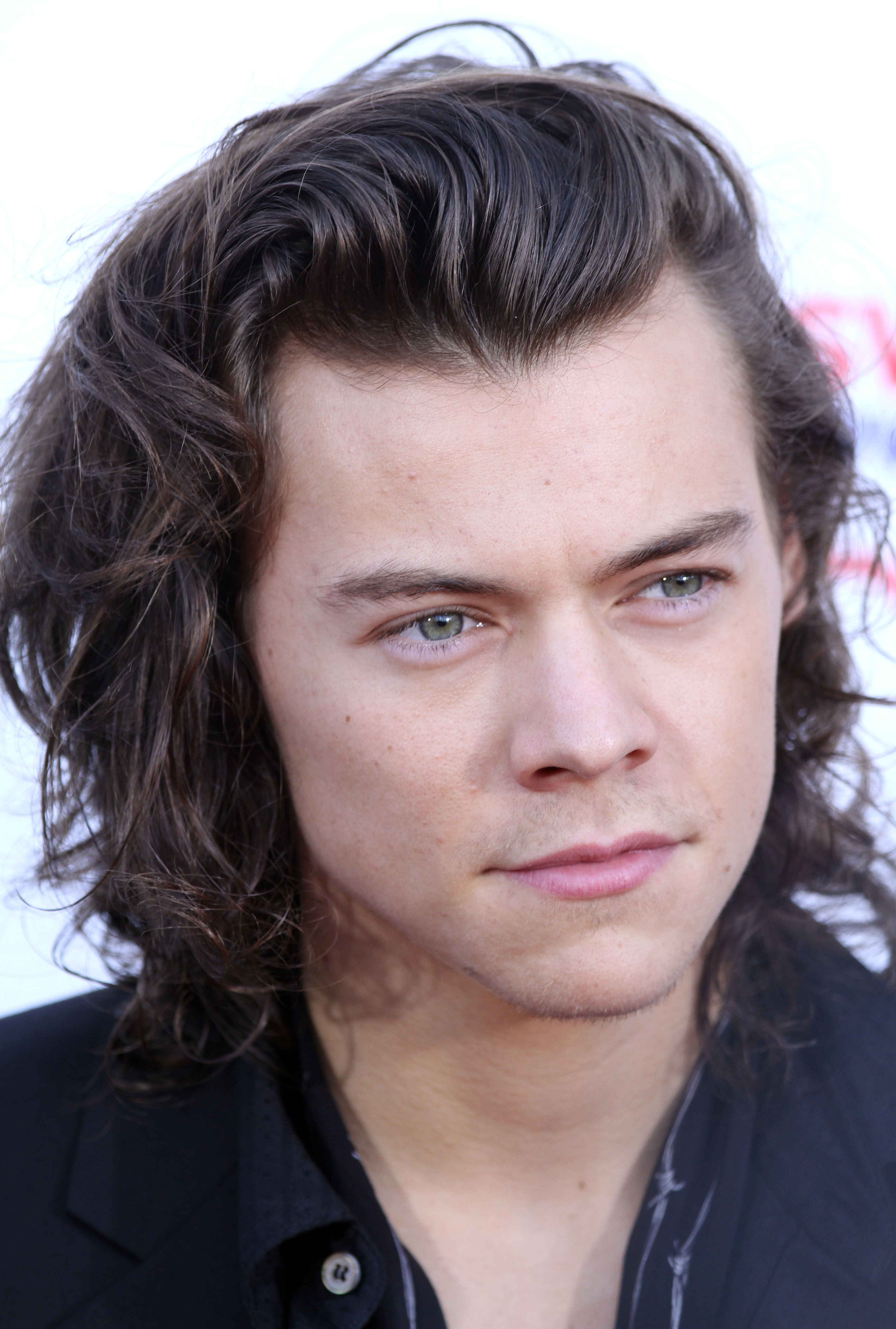 Harry Styles quotes (13 quotes) | Quotes of famous people
